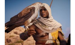 Assassin's Creed Origins head