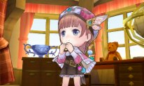 Ateliera Rorona PLus 3DS 28