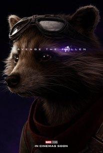 Avengers Endgame Poster Affiche Teaser (18)