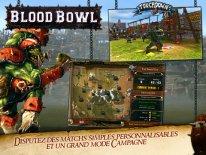 blood bowl screenshot  (3).