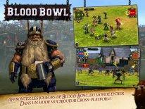 blood bowl screenshot  (4).