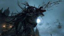 Bloodborne 14.08.2014  (8)