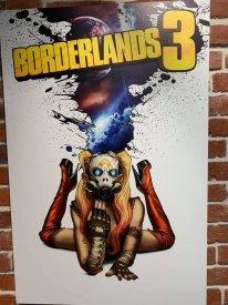 Borderlands 3 Comic Con Jaquette alternatives (71)