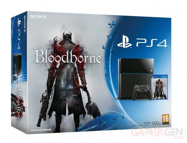 Bundle PS4 bloodborne pack