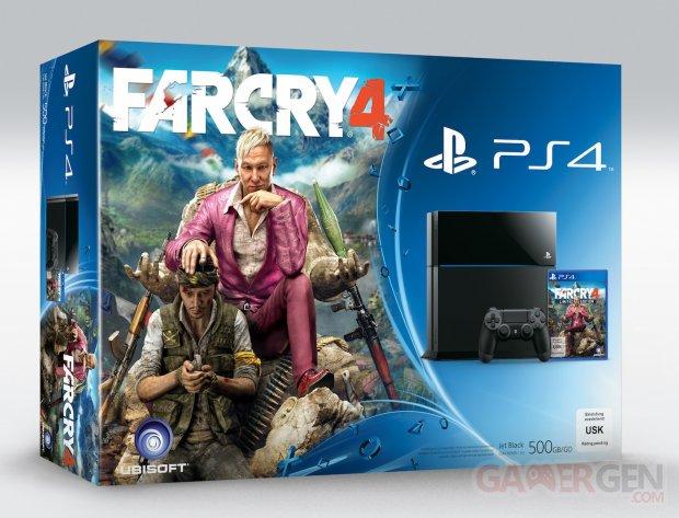 Bundle PS4 Far Cry 4