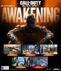 call of duty black ops Awakening