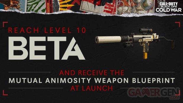 Call of Duty Black Ops Cold War beta Mutual Animosity SMG blueprint