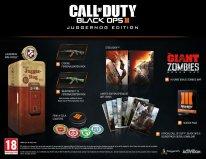 Call of Duty Black Ops III 10 07 2015 collector 1 (1)