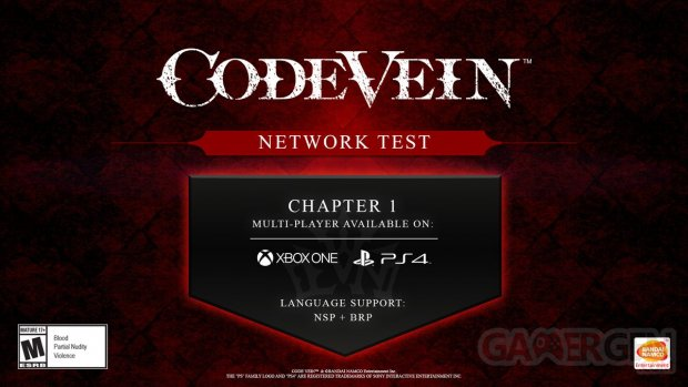 Code Vein Network Test 08 05 2019