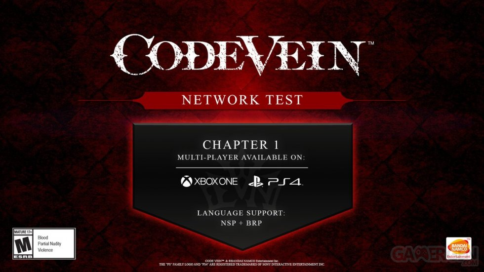 Code-Vein-Network-Test-08-05-2019