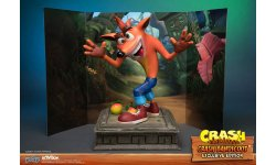 Crash Bandicoot First 4 Figures Figurine Statuette Exclusive Edition (12)