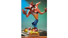 Crash Bandicoot First 4 Figures Figurine Statuette Exclusive Edition (31)