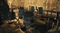 Dark Souls II Crown of the Old Iron King 26 08 2014 screenshot (11)