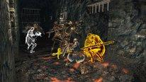 Dark Souls II Crown of the Old Iron King 26 08 2014 screenshot (14)