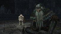 Dark Souls II Crown of the Old Iron King 26 08 2014 screenshot (2)