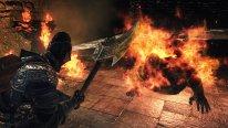 Dark Souls II Crown of the Old Iron King 26 08 2014 screenshot (7)