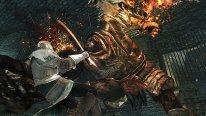 Dark Souls II Crown of the Old Iron King 26 08 2014 screenshot (8)