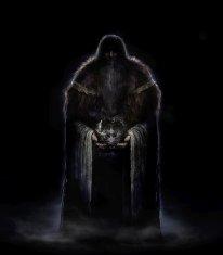 Dark Souls II Scholar of the First Sin  (12)