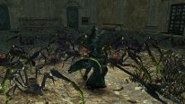 Dark Souls II Scholar of the First Sin 25.11.2014  (5)