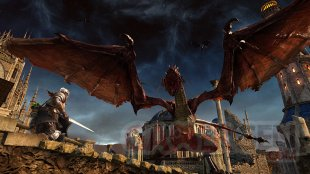 Dark Souls II Scholar of the First Sin 25.11.2014  (6)