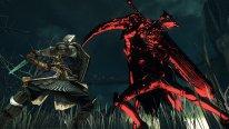 Dark Souls II Scholar of the First Sin  (4)
