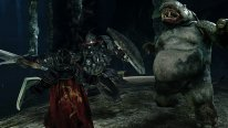 Dark Souls II Scholar of the First Sin  (8)