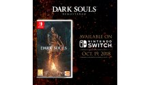 Dark Souls Remastered images