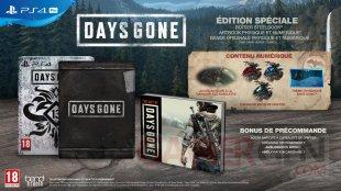 Days Gone édition spéciale