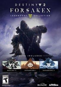 Destiny 2 Renégats La Collection Légendaire jaquette PC 01 31 07 2018