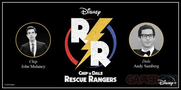 Disney Chip n Dale Rescue Rangers logo