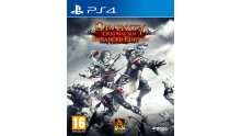 Divinity Original Sin Enhanced Edition jaquette PS4