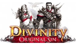 Divinity Original Sin Will Launch on Linux