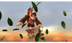 Donkey Kong Country Tropical Freeze 21.01.2014  (9)