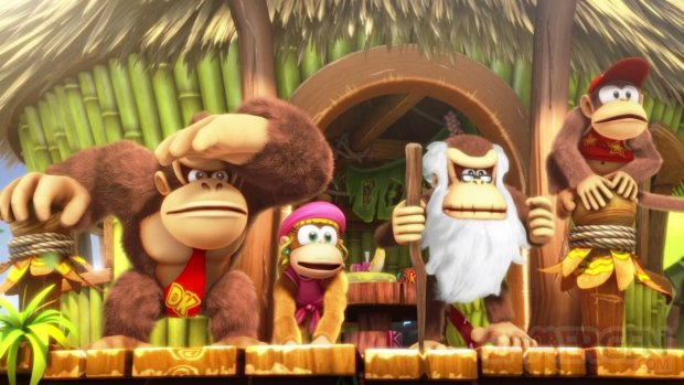 Donkey Kong Country Tropical Freeze images (2)