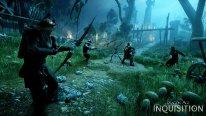 Dragon Age Inquisition 13.08.2014  (14)