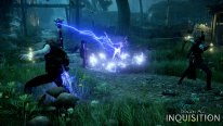 Dragon Age Inquisition 13.08.2014  (15)