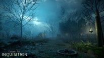 Dragon Age Inquisition 13.08.2014  (1)