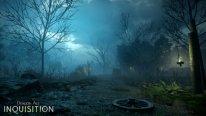 Dragon Age Inquisition 13.08.2014  (2)