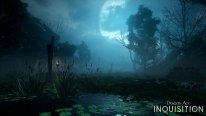 Dragon Age Inquisition 13.08.2014  (4)