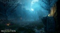 Dragon Age Inquisition 13.08.2014  (5)