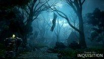 Dragon Age Inquisition 13.08.2014  (9)