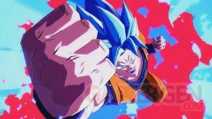 Dragon Ball FighterZ head