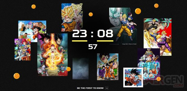 Dragon Ball Project image