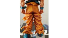 Dragon-Ball-Xenoverse-2-collector-unboxing-déballage-photos-27