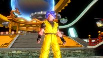 Dragon Ball Xenoverse 26.01.2015  (25)