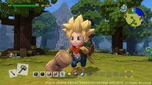 Dragon-Quest-Builders-2-03-13-09-2018