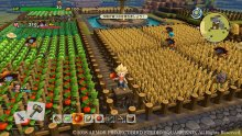 Dragon-Quest-Builders-2-06-27-09-2018