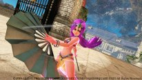 Dragon Quest Heroes 2015 02 18 15 001