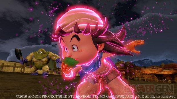 Dragon Quest Heroes II (15)