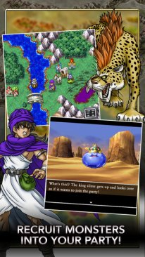 dragon quest v ios  (3).